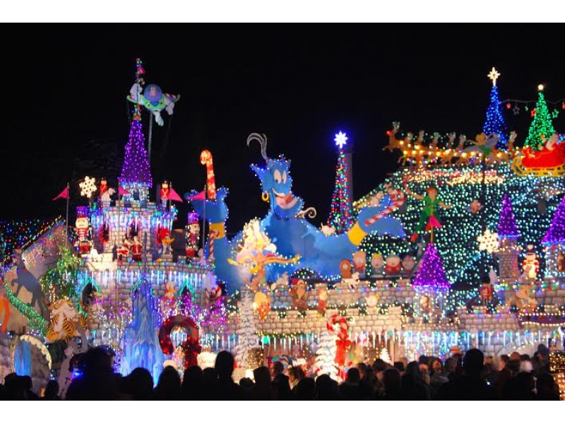 Rohnert Park Man's Castle Crowned King in National Holiday Lights ...