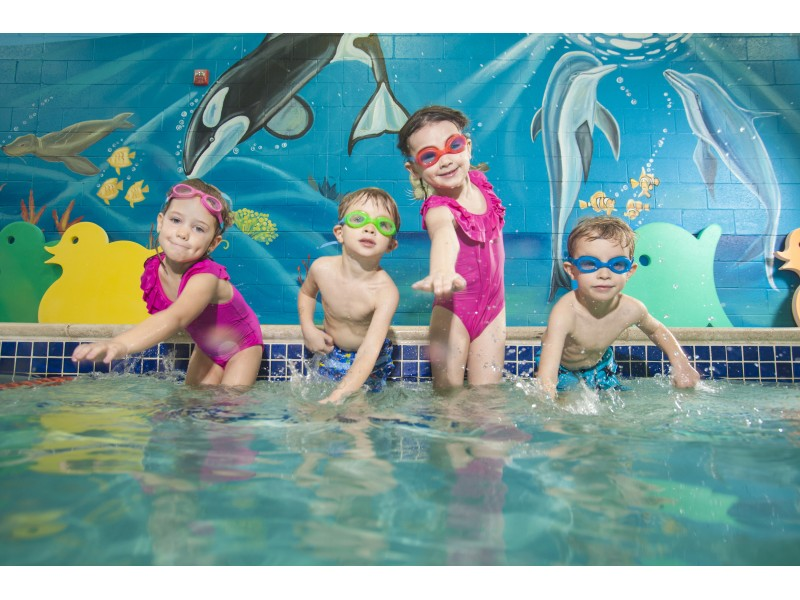 Goldfish Swim School To Open In Plainfield In September 2015 Plainfield Il Patch