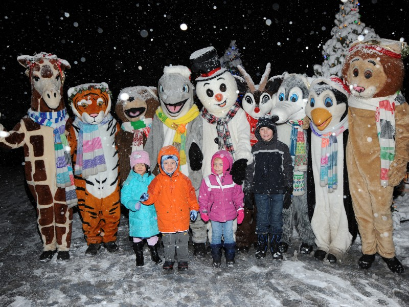 Superb Brookfield Zoou0027s Holiday Magic Creates A Winter Wonderland Festival For  Families