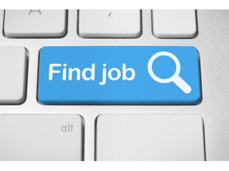 Job Openings: Field Museum, Coca-Cola, Fantrack | Oak Park, IL Patch