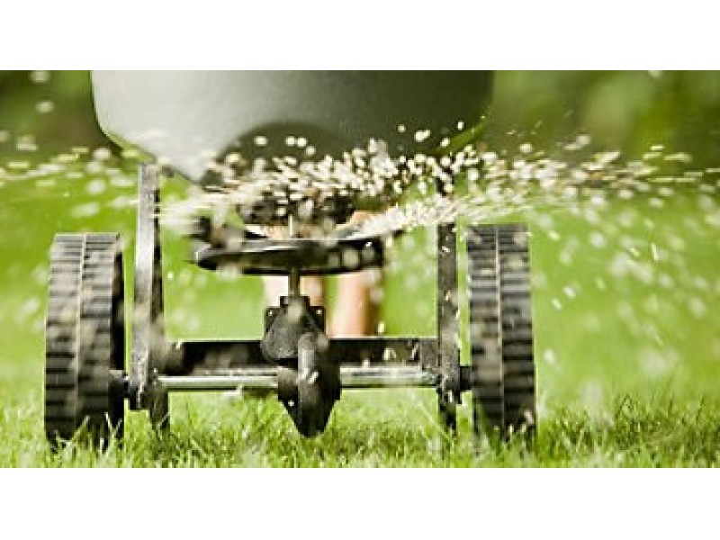 Fall Lawn Care Tips Five Important Steps Every Homeowner