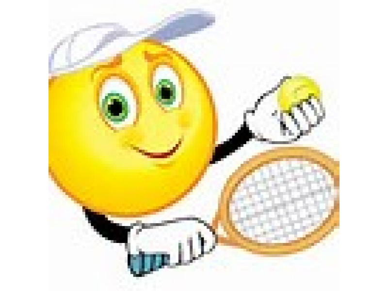 Summer Tennis Phoenixville Pa Patch