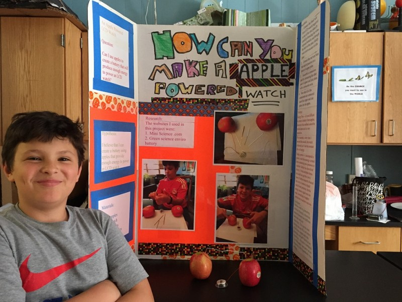 baseball science fair projects