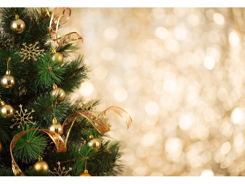 Trumbull Residents: How to Get Rid of Christmas Trees | Trumbull ...