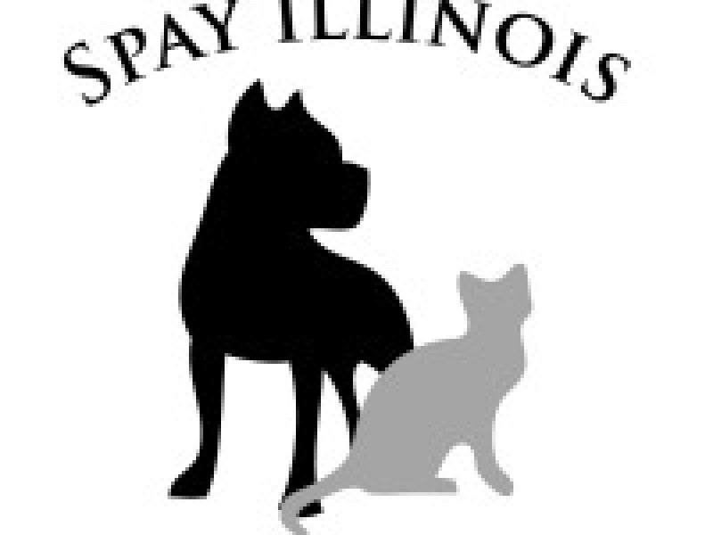Low cost pet vaccines at karens grooming joliet il patch low cost pet vaccines at karens grooming spay illinois will solutioingenieria Choice Image