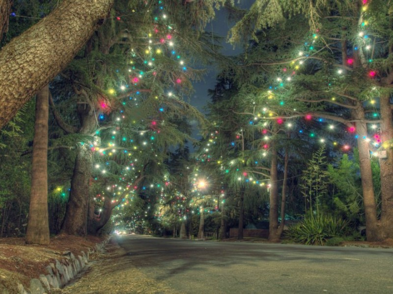 Altadena Kicks-Off Holidays With Annual Christmas Tree Lane, Festival |  Pasadena, CA Patch - Altadena Kicks-Off Holidays With Annual Christmas Tree Lane
