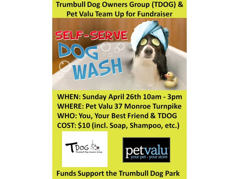 Trumbull dog park dog wash fundraiser trumbull ct patch trumbull dog park dog wash fundraiser solutioingenieria Image collections