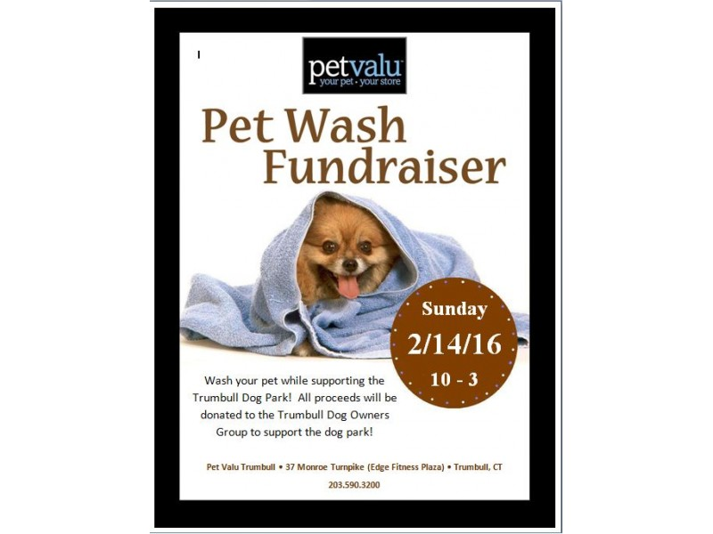Dog wash fundraiser trumbull ct patch dog wash fundraiser solutioingenieria Image collections