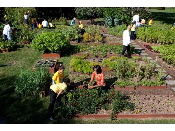 Michelle Obama Coming To Newark Nj For Garden Tour