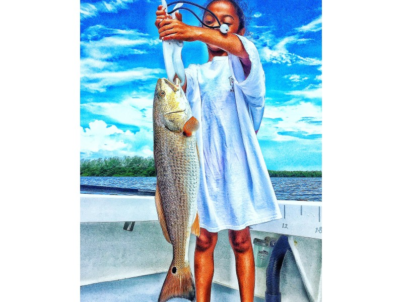 Anna maria island fishing charters august 1st 14th for Anna maria island fishing report
