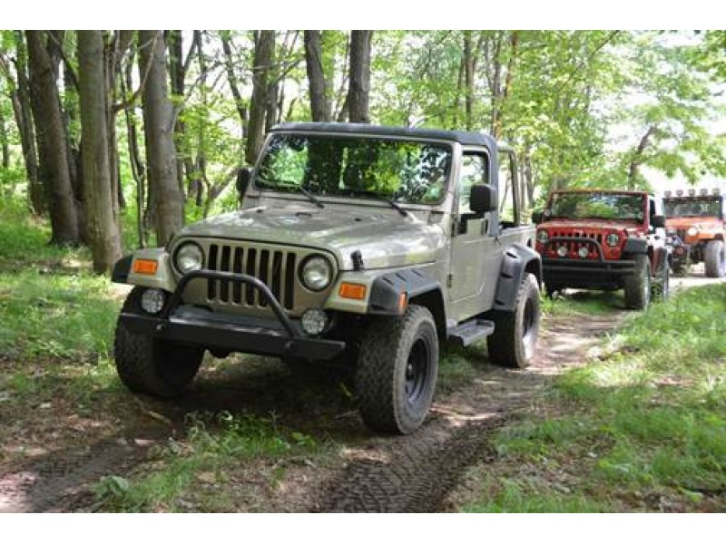 Bantam Jeep Parade Attempts Guinness World Record Cranberry Pa Patch