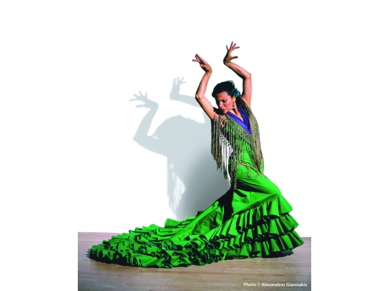 Flamenco And Spanish Dance Classes In Astoria Ny Forest Hills Ny