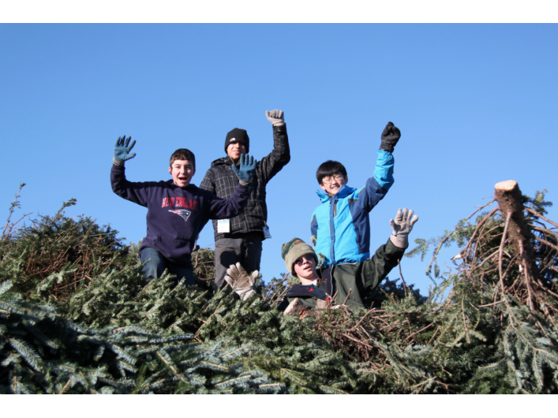 winchester boy scout troop 507 holds annual christmas tree pick up winchester ma patch - Boy Scout Christmas Trees