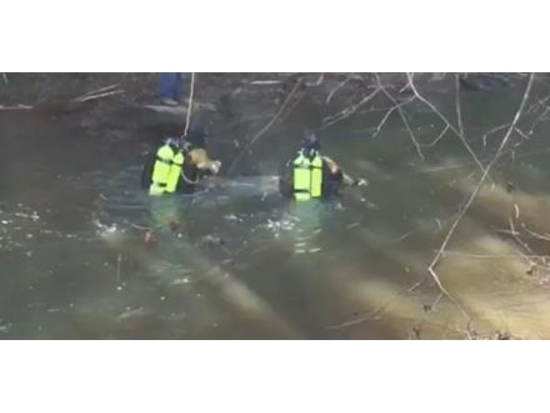 Body Found In Yellow River IDed as Missing Teen   Loganville, GA Patch