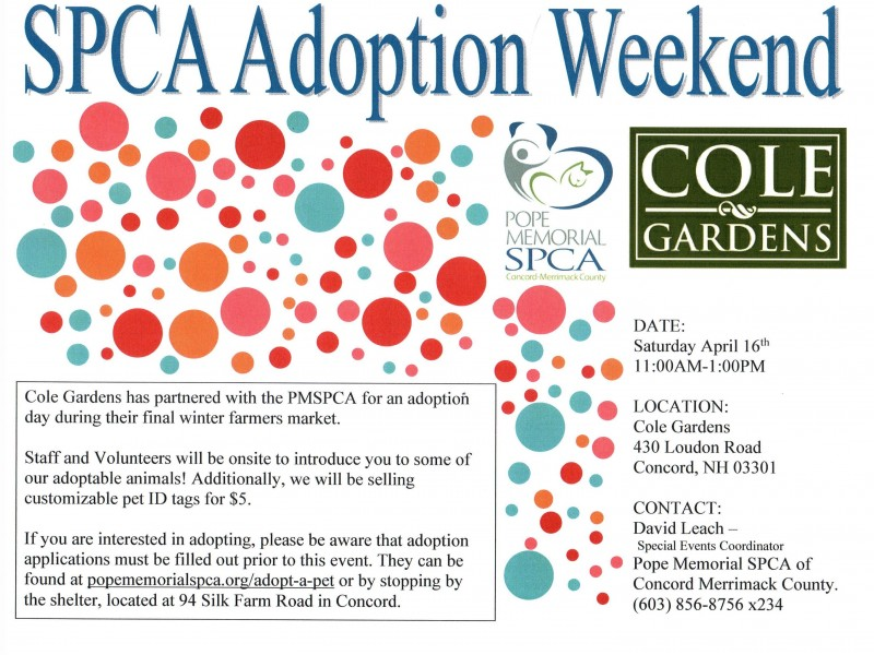 spca adoption day at cole gardens concord nh patch