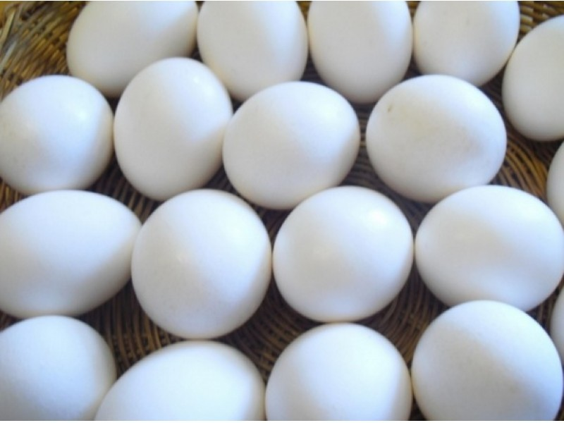 How to Cook Perfect Hard Boiled Eggs For Easter - Downtown Austin ...