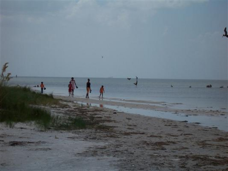 Mage Apollo Beach Fl The Best Beaches In World