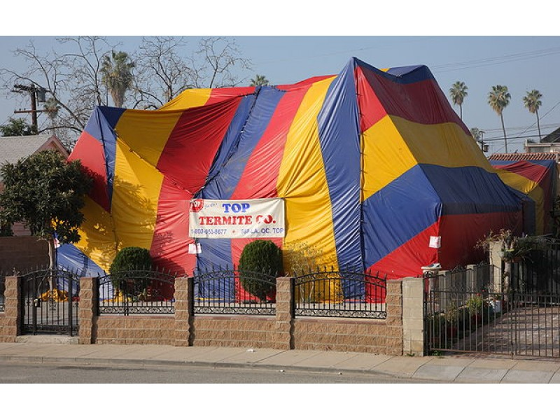 tent over house