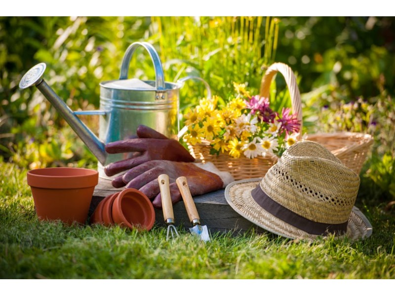 Chelmsford Library To Host Gardening Lecture
