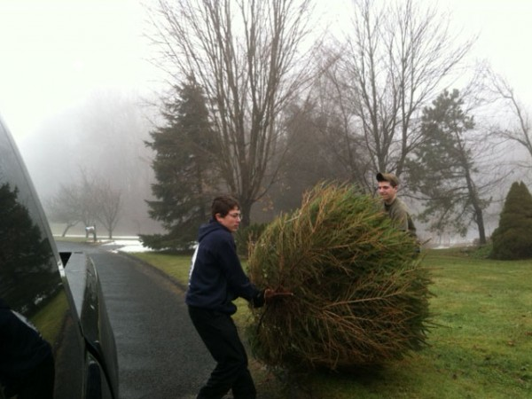Durham Christmas Tree Pick-Up - Boy Scout Fundraiser - Durham, CT ...