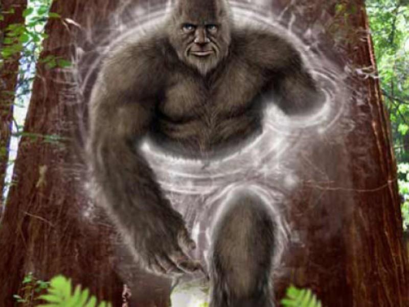 Does bigfoot really exist santa cruz ca patch does bigfoot really exist sciox Images