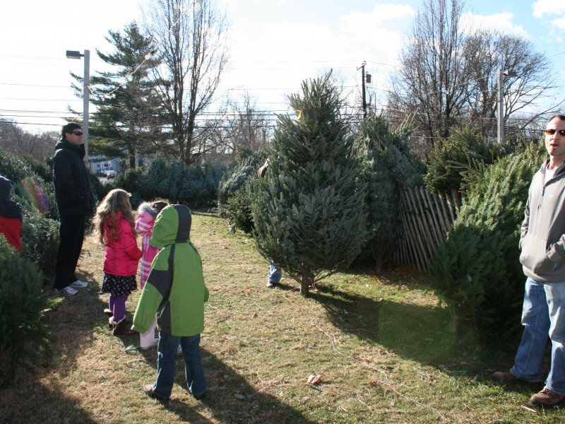 The Christmas Spirit And Trees At St Ann S Church Sayville Ny Patch