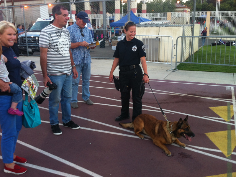 Photos Law Enforcement Dogs A Big Hit At Police K 9
