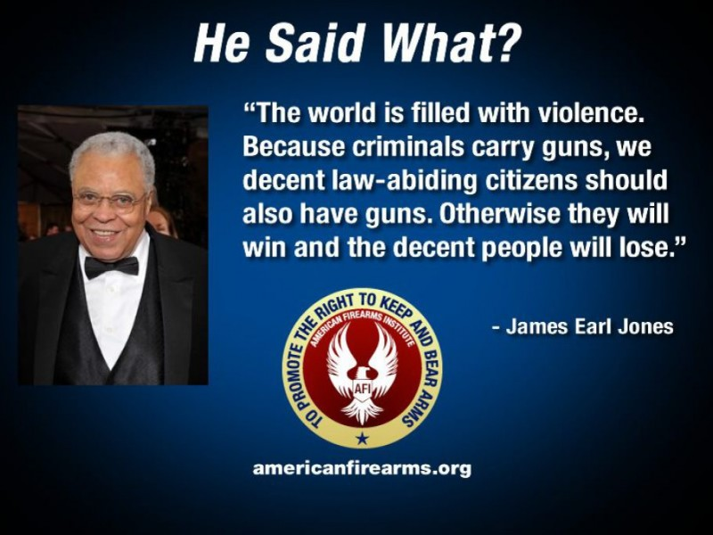 Pro Gun Quotes Interesting Pro Gun Rights Quotes