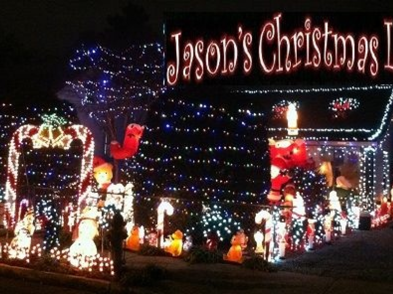 jasons christmas light display collects supplies for alley cat rescue a non kill rescue