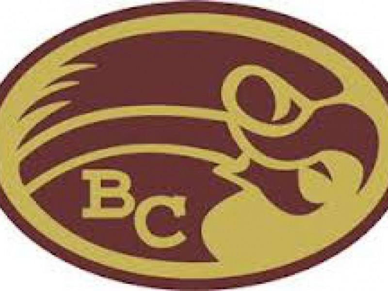 palmerton preschool becahi softball team is district 11 aaa champion 426
