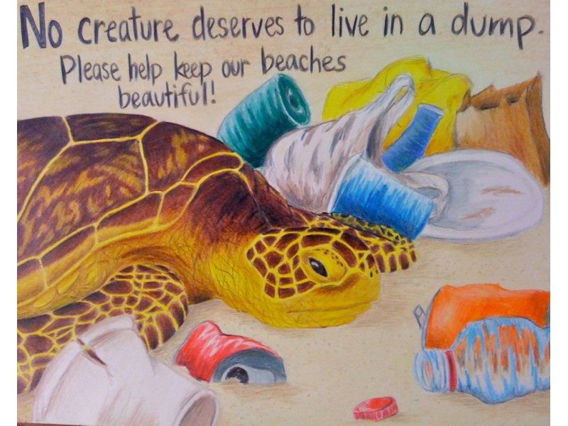 Students Shine In Earth Day High School Poster Contest