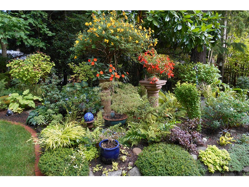 Open Days Program Garden Tour   Bainbridge Island