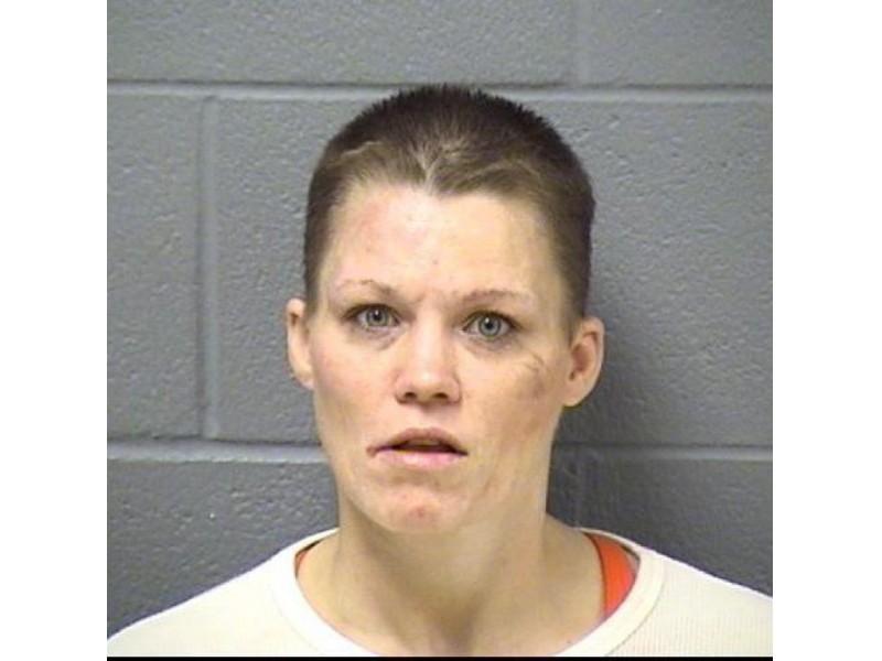 Blotter Felony Domestic Batteries Duis Heroin Busts