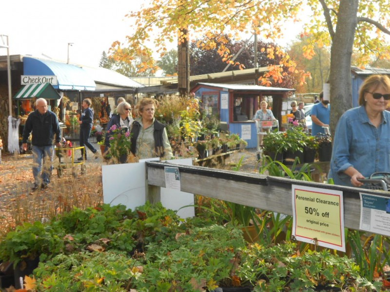 41st annual fall festival clearance sale at russell 39 s wayland ma patch for Russell s garden center wayland ma