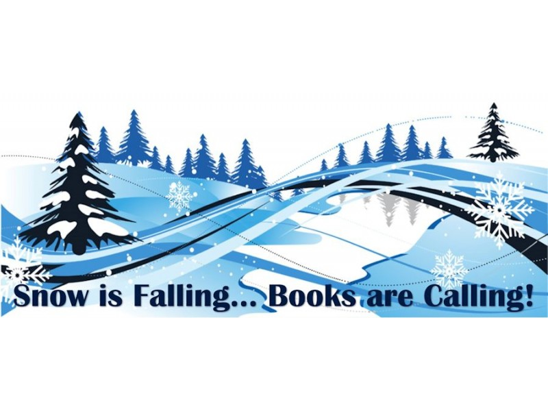Baby, It's Cold Outside! Adult Winter Reading Program at the Orion Township Public Library