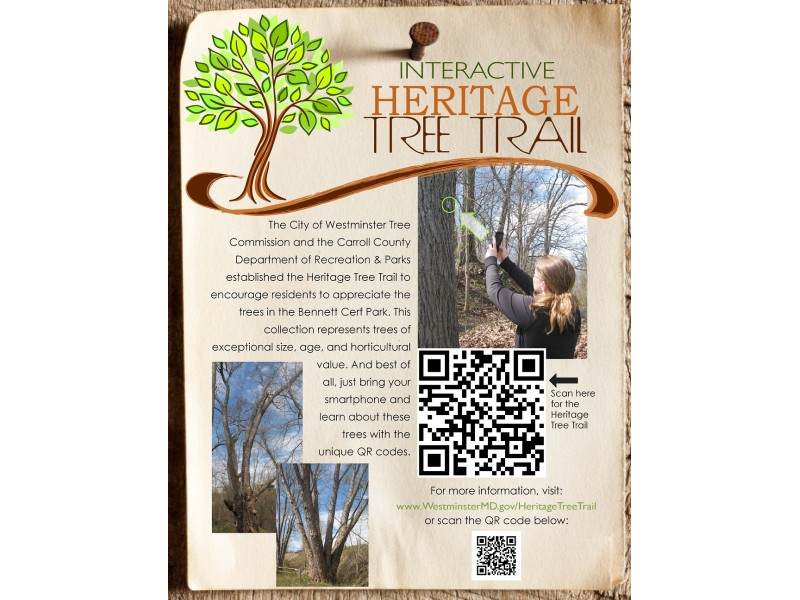 City opens interactive heritage tree trail westminster for Country living magazine customer service