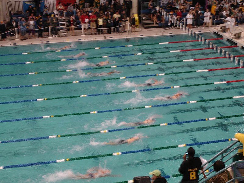Bellmore Merrick Places Third At County Swim Championships Merrick Ny Patch