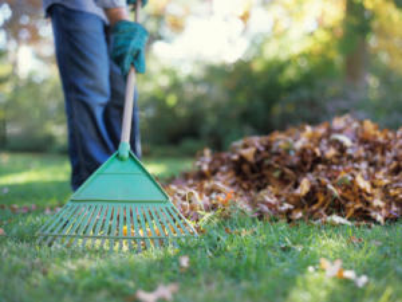 Time Is Running Out To Fertilize Lawns In Maryland