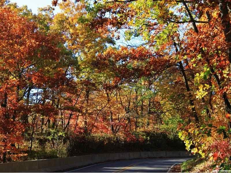New Lenox Illinois >> 10 Scenic Drives in Illinois to Take During the Fall | Joliet, IL Patch