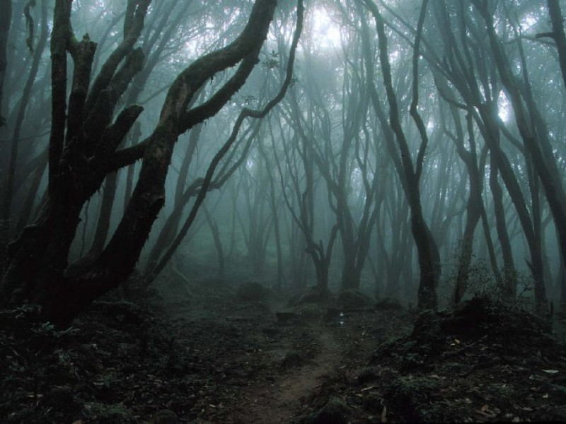 top 5 haunted places in maryland
