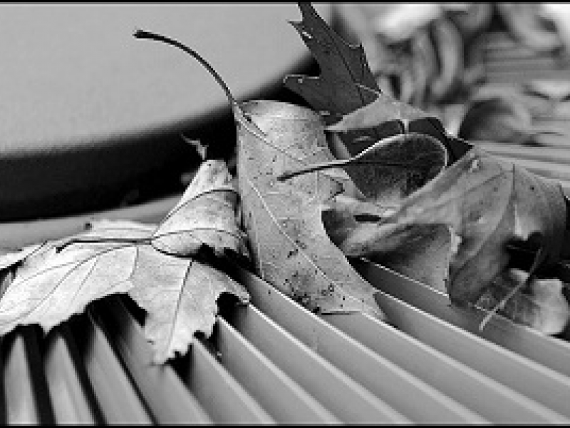 Image result for leaves in outdoor condenser unit