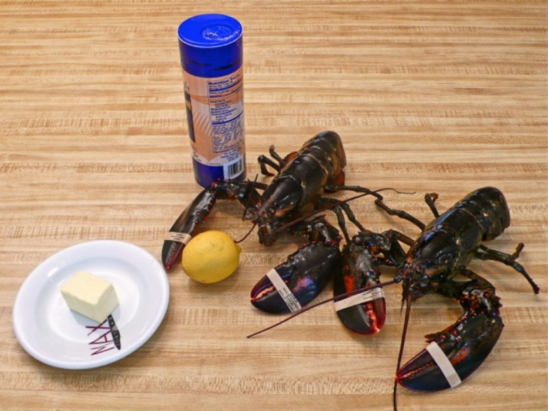 Lobsters For $4.99/lb This Week at Stop & Shop | Westborough, MA Patch