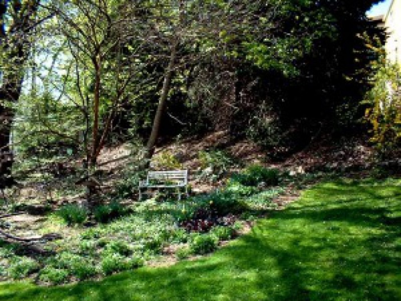 your backyard wildlife habitat begin in spring to control fleas