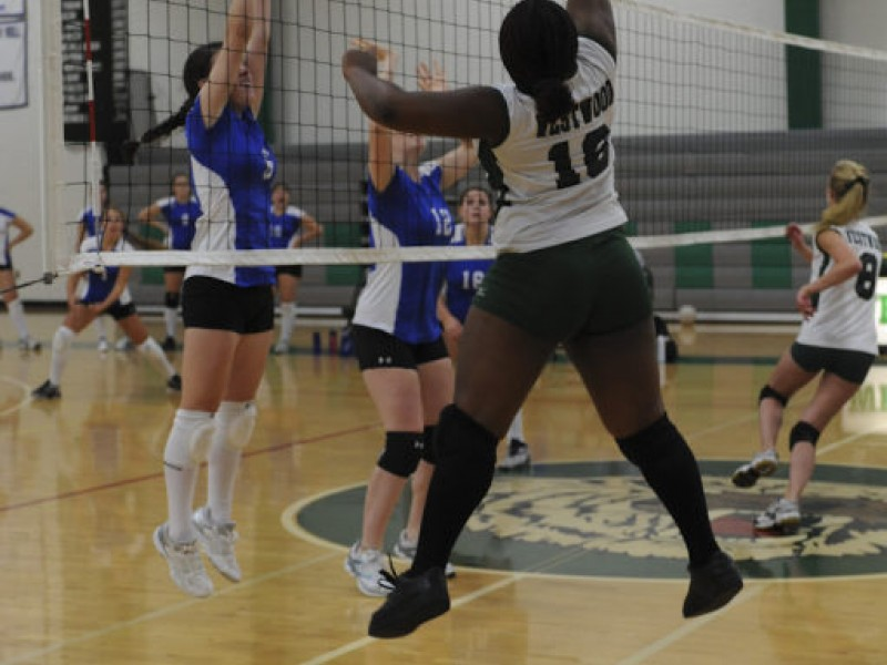 Photos Westwood Volleyball Falls To Ashland At Home