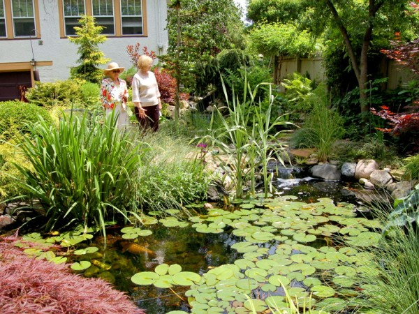 lisle woman's club sponsoring organic gardening forum  lisle, il, Natural flower
