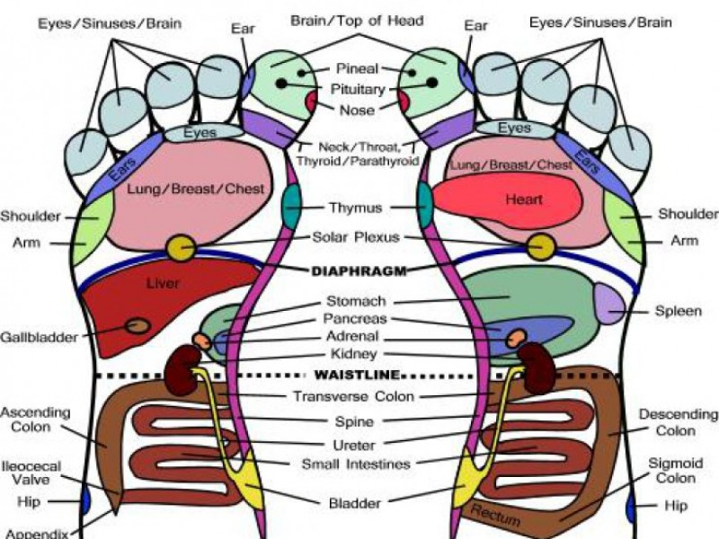 Foot Reflexology The Art Of Ancient Chinese Medicine