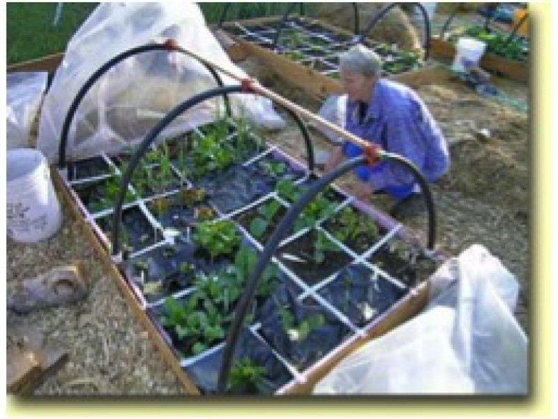 blog garden fabric floating row covers protection for your crops 0 - Garden Row Covers