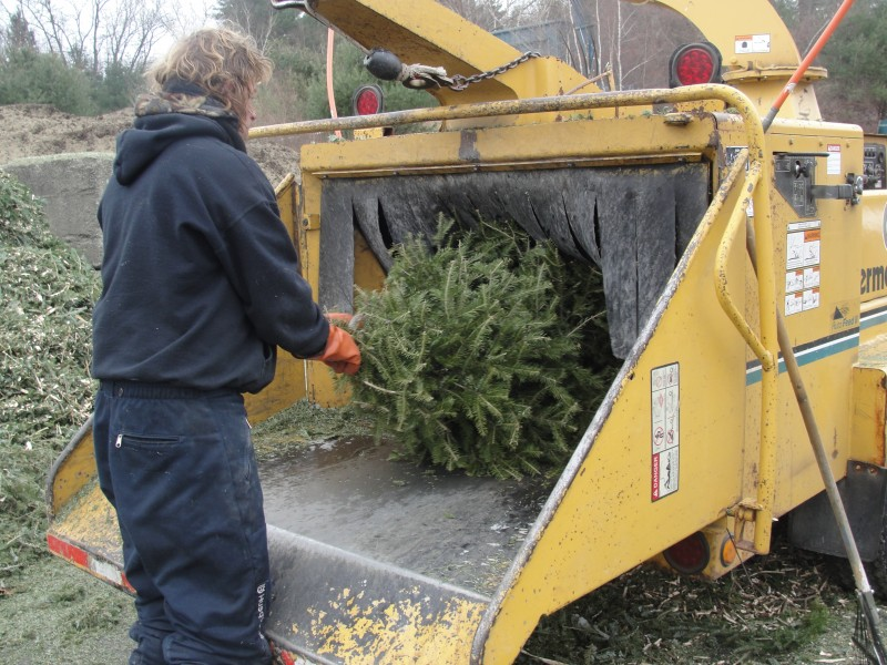 Free Christmas Tree Recycling in Kirkland by Waste Management ...