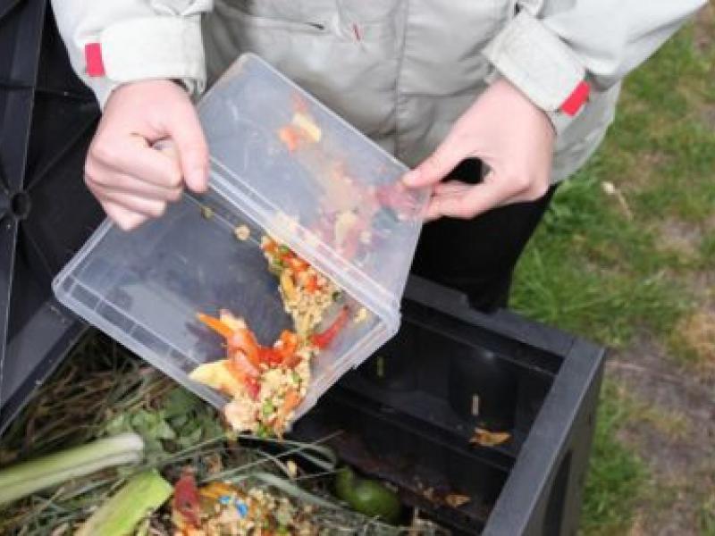 City to Begin Food Waste Collection in Culver City Schools
