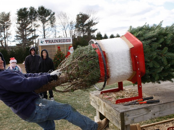places to buy christmas trees with christmas tree shop riverhead - Buy Christmas Tree